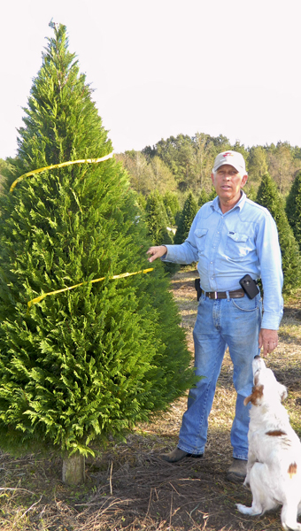 Shirley Burnham / The Prentiss Headlight – Wesley Bass and friend check out some of the Christmas trees sold and ready to be cut.
